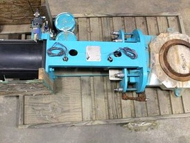 Endurance 14 in Gate Valve