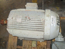 WEG 20 HP Induction Motor