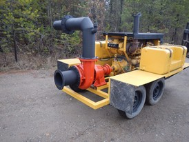 Fairbanks Morse 8 in. Portable Pump