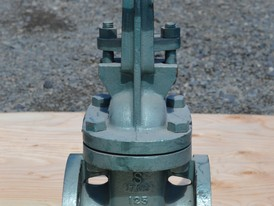 Hattersley Newman Hender 3 in. Gate Valve