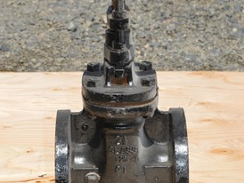 Watts Recco Lawrence 2.5 in. Gate Valve