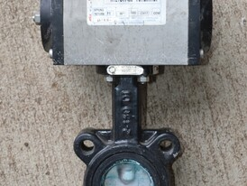 Mas 2 in. Butterfly Valves
